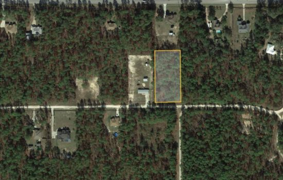 Beautiful Marion County rural lot: over 1 acre of level wooded lot near everything Florida!