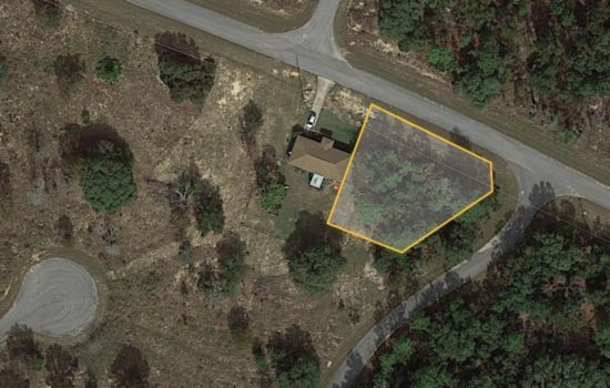 Peace and quiet on 1/3 acre in Central Florida—just $8499!