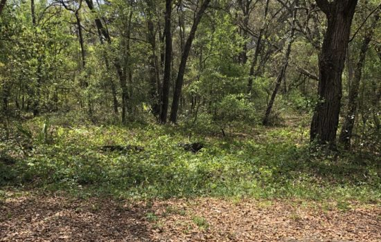 Nice 1/2 acre Central Florida residential lot near lakes