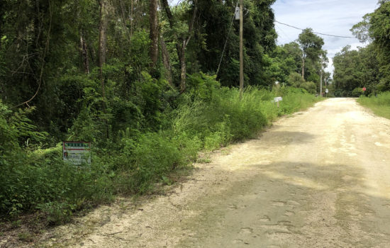 Wow–0.26 acre lot in a fantastic location for building your Florida lifestyle- Ocala, FL