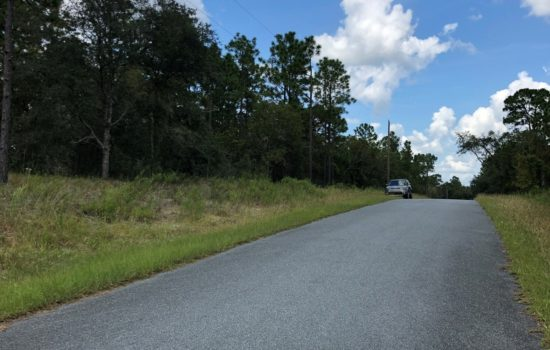 Sweet One Acre parcel in Rainbow Lakes Estates near Dunnellon and the Gulf!